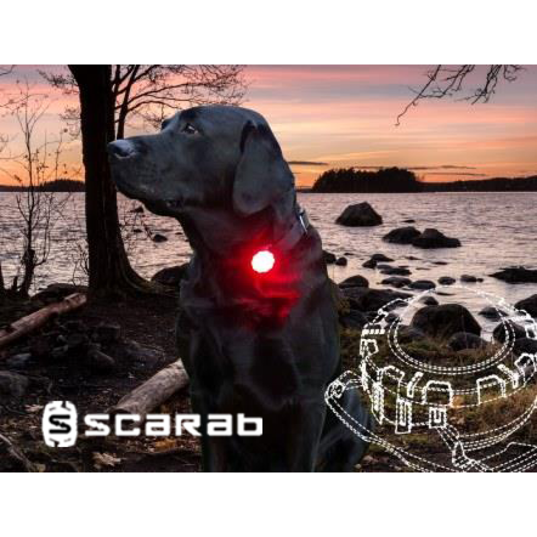 Scarab beacon safety light